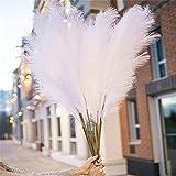 Faux Pampas Grass Decor Tall 43'/110cm - 4 Stems Fluffy Artificial White Pampas Grass White Pompass Grass Branches Tall Fluffy Stems Floor Vase Filler for Living Room Decor & Boho Decor