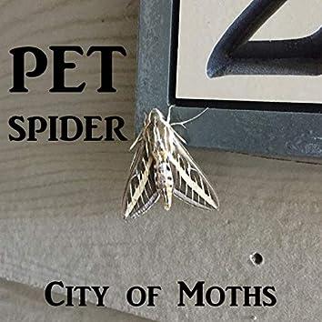 City of Moths
