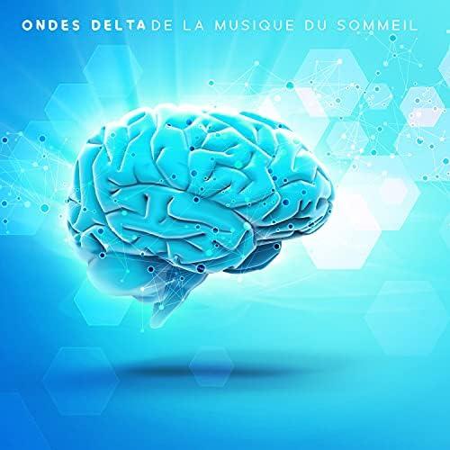 Sophrologie musique d'ambiance, Oasis de sommeil & Ensemble de Musique Zen Relaxante