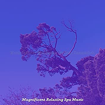 Music for Deep Meditation - Artistic Kamancheh