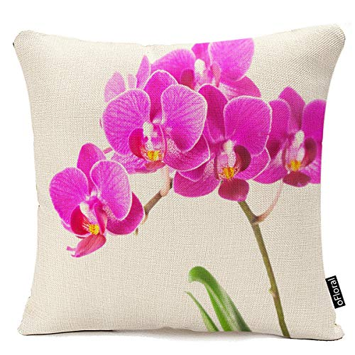 oFloral Pink Purple Dendrobium Orchid Tropical Flower Throw Pillow Case Cushion Cover Home Sofa Decorative 18 X 18 Inch Pillow Cover
