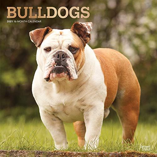 Bulldogs 2021 Calendar: Foil Stamped Cover