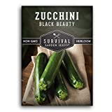 Survival Garden Seeds - Black Beauty Zucchini Seed for Planting - Packet with Instructions to Plant and Grow Your Home Vegetable Garden - Non-GMO Heirloom Variety
