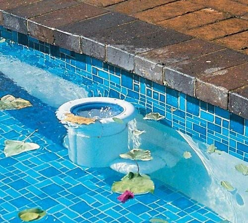 Pool Skimmer and Pool Cleaner