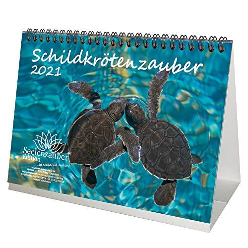 Schildkrötenzauber DIN A5 Tischkalender für 2021 Schildkröten - Geschenkset Inhalt: 1x Kalender, 1x Weihnachtskarte (insgesamt 2 Teile)