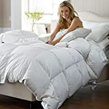 Best Cozy Beddings Goose Down Comforter Kings - C&W Luxurious King/California King Size Siberian Goose Down Review