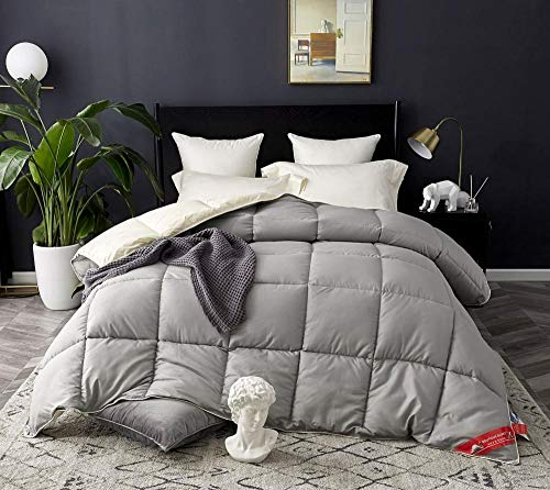Hahaemall Winter Duvet King Size Anti-Dust Mite & Feather-Proof Fabric, All Season 100% Cotton Down Proof Fabric - Anti Allergen - Washable At Home Range-Beige Gray_220x240cm-4Kg