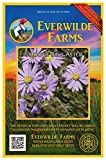 Everwilde Farms - 500 Smooth Blue Aster Native Wildflower Seeds - Gold Vault Jumbo Seed Packet