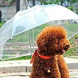ZN Hunde-Regenschirm/Regenmantel, mit Leine, transparent
