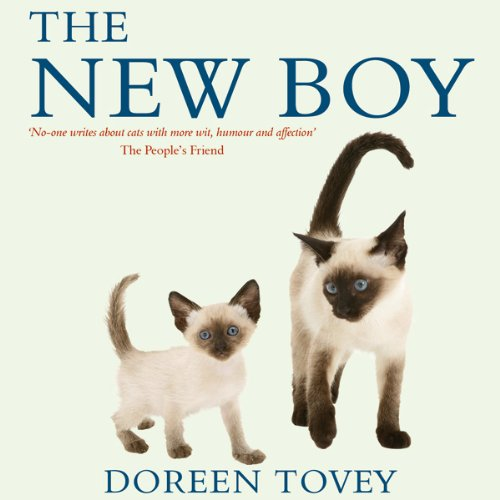 The New Boy audiobook cover art