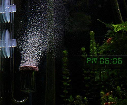 Pm0606 Micro co2 Bubble Diffuser air Stone Built in Bubble Counter, Smallest Smooth co2 Bubbles, Very Good for Aqua Plants, Shrimps (co2 Diffuser for Small and Normal Size Tank) 0.7