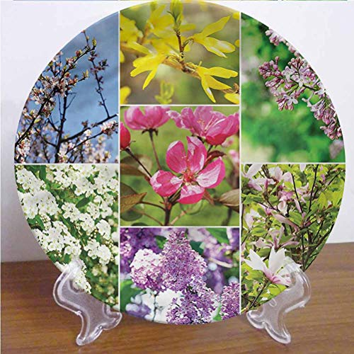 8 Inch Flower Ceramic Dinner Plate Lavender Blossoming Nature Round Porcelain Ceramic Plate Decor Accessory for Dining, Parties, Wedding