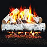 Peterson Real Fyre 18-inch White Birch Gas Log Set With Vented Natural Gas G4 Burner - Manual Safety Pilot