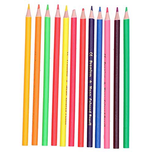 12 lápices de colores de 12 colores, metalizados o fluorescentes, suministros de pintura de grafiti para bocetos(Plomo de color metal)