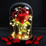 trounistro Die Schöne und das Biest Rose Lampe Glaskuppel Künstlich Holzsockel LED Licht der Rose...