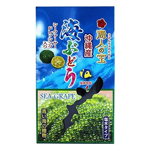 塩水タイプ 沖縄産 天然海ぶどう 100g×8箱 海人の宝 希少な天然海ぶどうを長期間保存タイプ シークヮーサー果汁入りたれつき