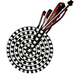 WESIRI 93 LEDs 6 Rings WS2812B 5050 RGB LED Ring Lamp Light Individually Addressable Full Dream Color DC5V with Mini Controller