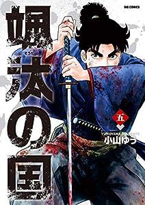 颯汰の国(5) (ビッグコミックス)