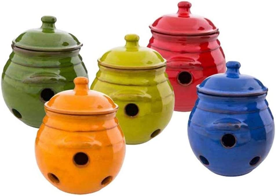 Divine Deli Verano Courier shipping free shipping Garlic Jar Cellar holes Lid Cheap mail order sales and with 5.9
