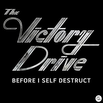 Before I Self Destruct (Deluxe)