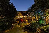 LFNSTXT Rompecabezas para adultos de 1000 piezas, diseño de casas de Disneyland Parks, estanque para adultos, familias y niños. Juguete educativo para decoración del hogar (75 x 50 cm)