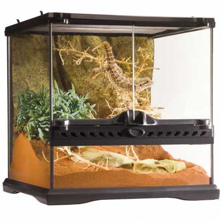 Exo Terra Glass Terrarium Kit, for Reptiles and Amphibians, Mini Wide, 12 x 12 x 12 inches, PT2600A1