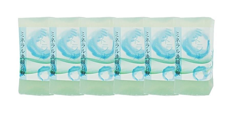 理論的宣教師縁石ミネラル洗顔石鹸 150g(6個入り)