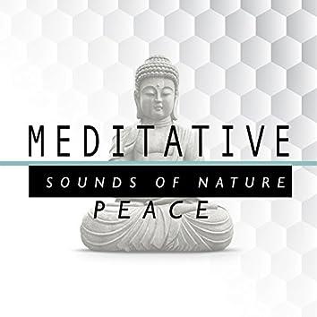 Meditative Sounds of Natural Peace