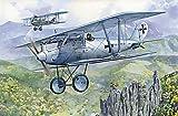 Roden Pfalz D.III German Biplane Fighter Model Kit