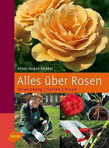 Alles über Rosen: Verwendung - Sorten -...