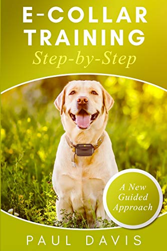 E-collar Training Step-by-Step: How-To Innovative Guide to Positively Train Your Dog Through E-collars. Tips and tricks and effective techniques for different species of dogs