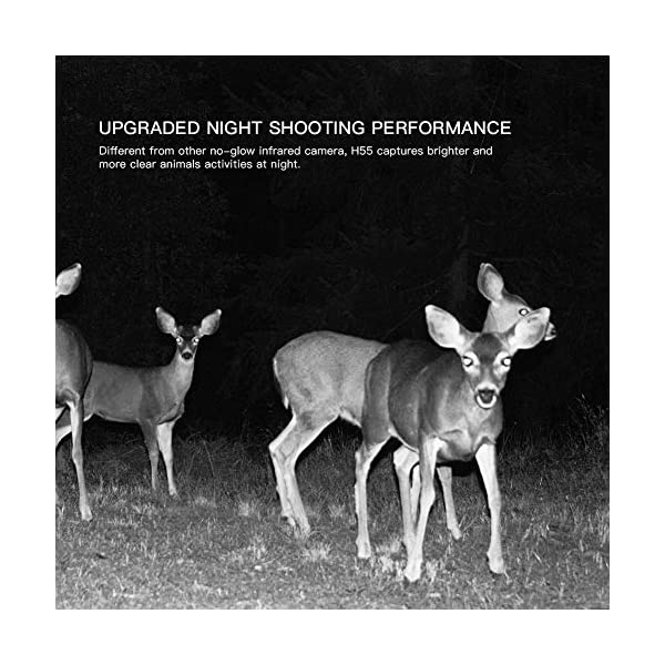 APEMAN Wildlife Camera 20MP 1080P Trail Camera, Night Detection Game Camera with No Glow 940nm IR LEDs, Time Lapse, Timer, IP66 Waterproof Design