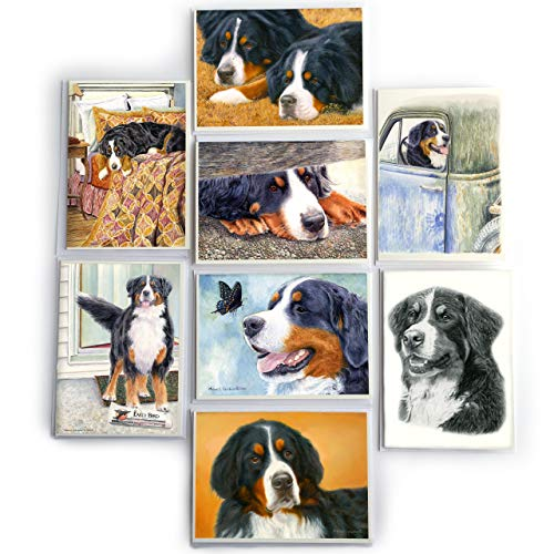 "BERNESE MOUNTAIN DOG 8 PACK NOTECARD SET by MICHAEL STEDDUM – Perfect Bernese Mountain Dog Greeting Card Set – 5"" x 7""- Wonderful Berner Gift"