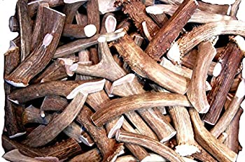 Premium Deer Antler Pieces - Dog Chews - Antlers by The Pound One Pound - Six Inches or Longer - Medium Large and XL - Happy Dog Guarantee!