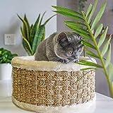 Cat Climbing Frame, Cat Post Tree Scratching Barrel, Activity Center Condo,Kitten Bed Scratcher Climbing Climber Playhouse,A
