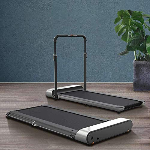 WALKINGPAD KINGSMITH R1