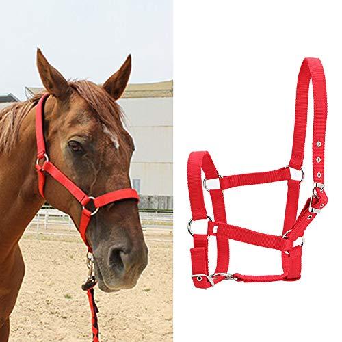 Cavezza Cavallo, fettuccia Ispessita ad Alta densità Briglia Cavallo Controllo Cavallo...