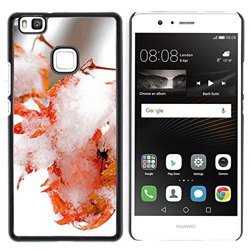 OB-star ( Helado Hielo Eaf Huawei P9 Lite / G9 Lite (Not for P9) Huawei P9 Lite/Huawei G9 Lite (Not for P9) Impreso Colorido Protector Duro Espalda Funda Piel De Shell