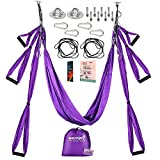 Warrior2 Aerial Yoga Swing Trapeze Hammock With Mounting Kit Hardware, Extension Straps, Manual | Antigravity Flying Yoga Sling Swing Sets, Aerial Silks, Inversion Exercise Equipment, Home Gym Fitness