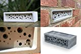 Bee Brick nestplatz Hotel Solitary Bee Hive House 21,5cm x...