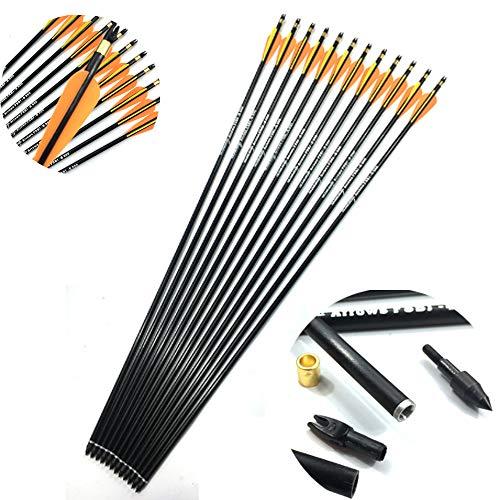 CNCBT 31Inch Bogenschießen Fiberglas Pfeile, 3-Zoll-Tropfen Feder Pfeil mit austauschbarem Kopf für die Compound- und Recurve-Bogen 20-50Lbs,24PACK