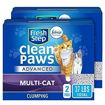 cat litter low dust