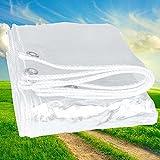 Lona Transparente de PVC Resistente al Agua de 450 g / M², Toldo de Plástico Resistente a La Lluvia con Ojales, Cubierta de Lona Transparente para Balcón de Jardín, 1x1m 2x2m 3x3m ( Size : 1.8x3.0m )