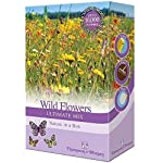 Wildflowers Garden Plant Seed Grow Your Own Poppies, Meadow Flowers & Grasses 1 x 15g Mixed Pack by Thompson & Morgan