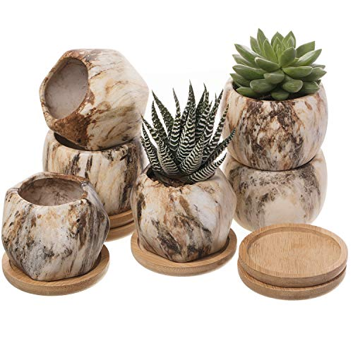 T4U 8cm Gemusterte Keramik Sukkulenten Töpfe mit Untersetzer 6er-Set, Klein Mini Blumentopf Übertopf für Kakteen Moos Zimmerpflanzen, Stein Sammlung