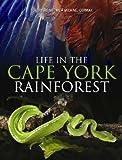 cape york rainforest