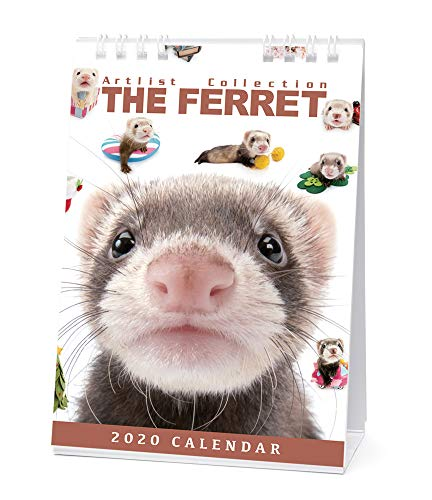 カレンダー 2020 卓上 THE FERRET フェレット 403379 2020年1月-2020年12月 アーリスト ふぇれっと