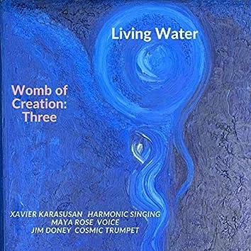 Womb of Creation: Three