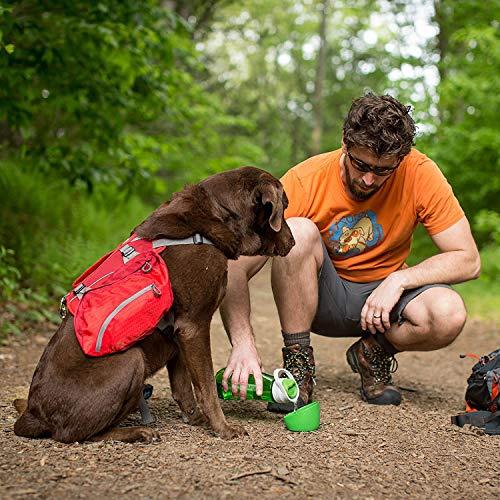 Kurgo Gourd 2 in 1 Dog Travel Water Bottle, Pet Water Bottle, Portable Water Dish for Dogs, Detachable Bowl, PVC/BPA Free, Dishwasher Safe, Holds 24 oz