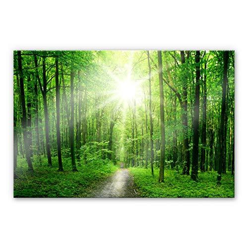 Plexiglas Schilderij Sunny Forest | Acrylglas Wanddecoratie Bomen in het Bos | 150x100 cm (bxh) | Ook Geschikt voor Buiten als Tuinschilderij